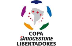 Copa Bridgestone Libertadores 2013.