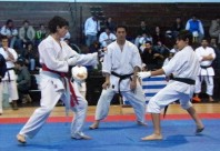 Imgenes de la Copa Confraternidad de Karate Tradicional.
